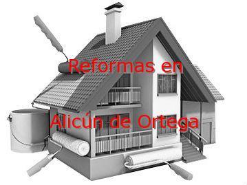 Reformas Granada Alicún de Ortega