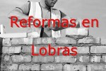 reformas_lobras.jpg